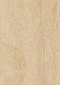 Laminex Raw birch cabinetry swatch